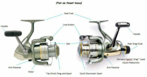 Drag System on a Spin Cast Reel